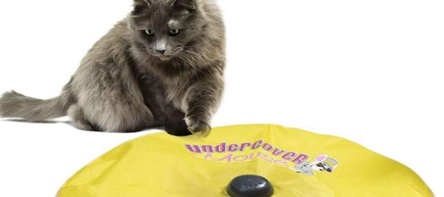 Американцы продают электронные дразнилки для кошек
