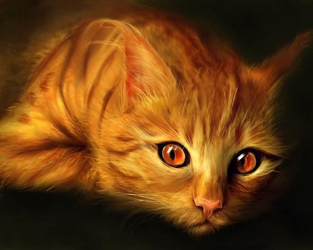 Бдительность кота помогла избежать пожара