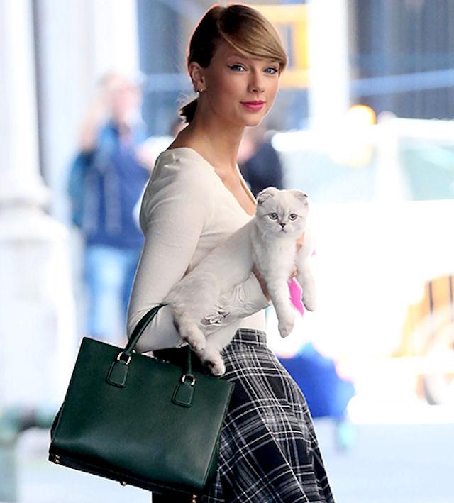 Для чего Тэйлор Свифт носит с собой кошку Оливию Бенсон?