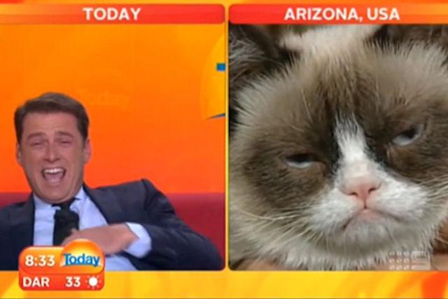 «Grumpy Cat» дал интервью австралийскому телеканалу