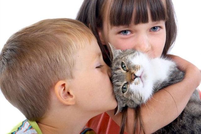 Кошка обучает детей-аутистов