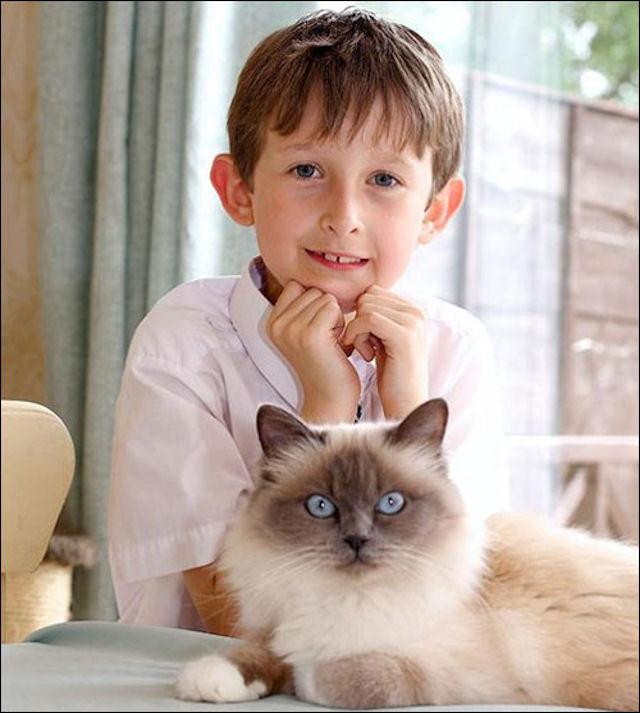 Кошка помогла мальчику сказать о своих чувствах