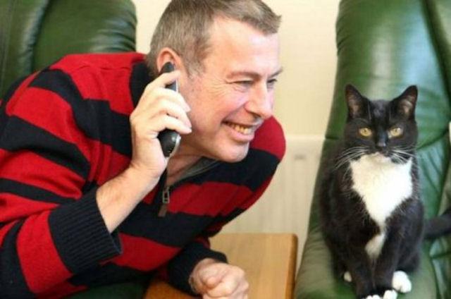 В Великобритании кошка стала предвестницей сердечного приступа