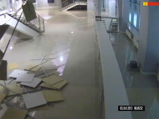 Кошка обрушила потолок в «Адлер-Арене»