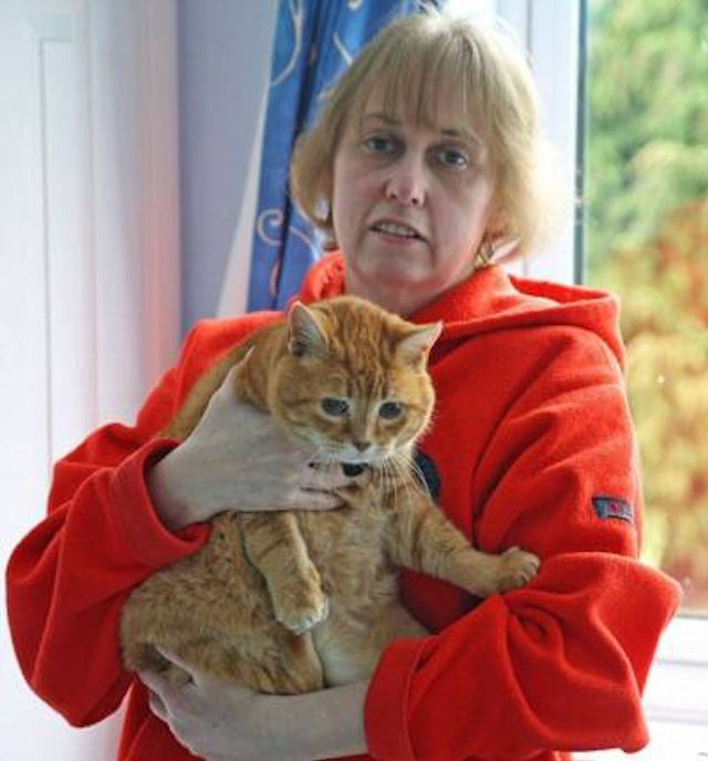 Кошки диагностировали у хозяйки опасное заболевание