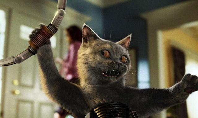 ЦРУ потратило на кошек-разведчик 20 млн долларов