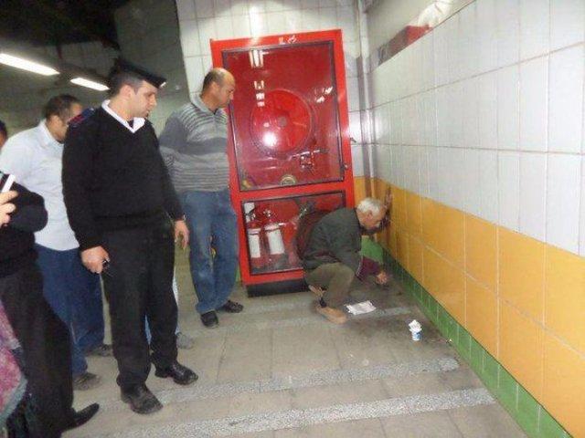Кот 5 лет прожил в стене метрополитена
