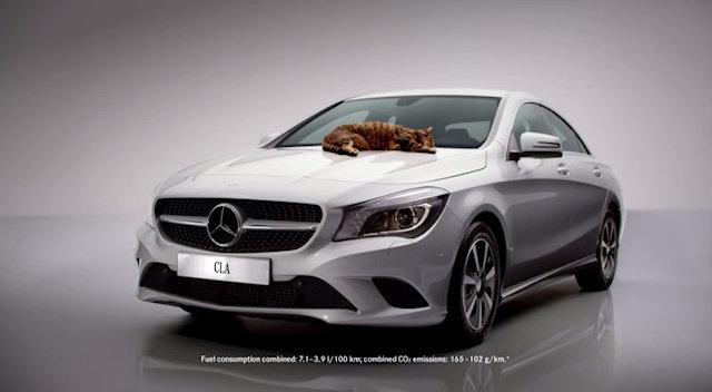 Кот-лентяй рекламирует немецкое авто