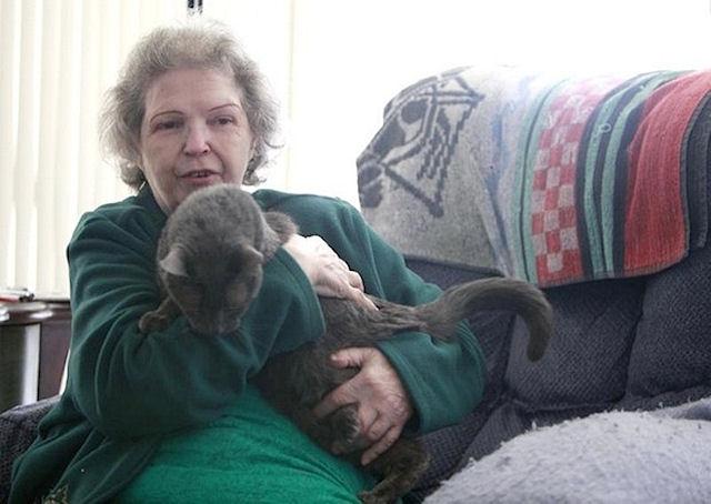 Кот спас любимую хозяйку от возможной гибели