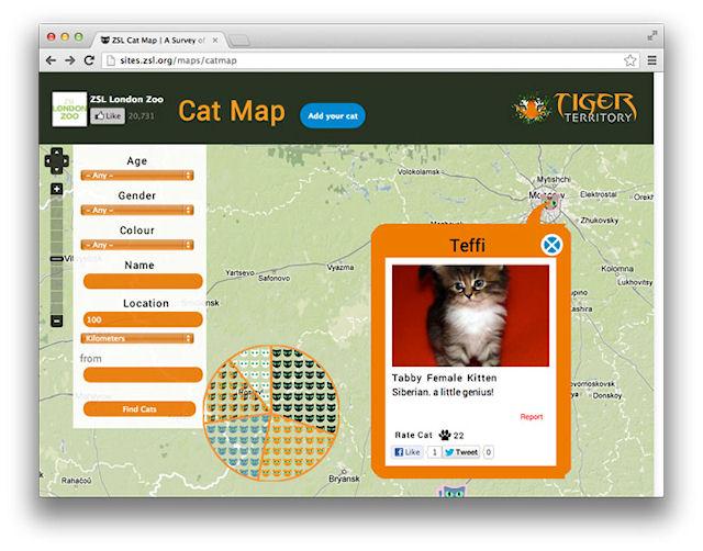 Все коты мира на одной карте