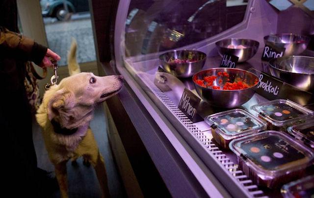 В Берлине появился ресторан для домашних животных