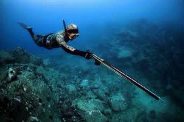 Подводное снаряжение на портале divemarket.com