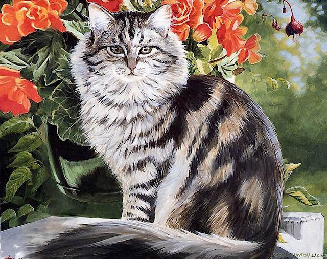 «Сэр Кот» - кошачья гостиница новой формации