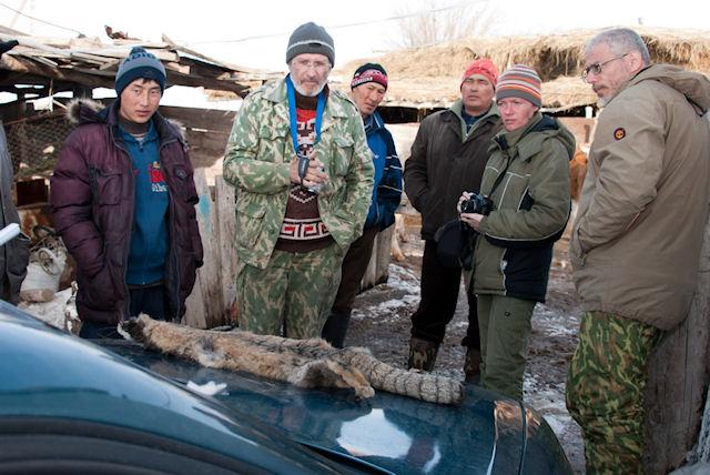 Контрабандист пытался провезти через границу 140 шкурок манула