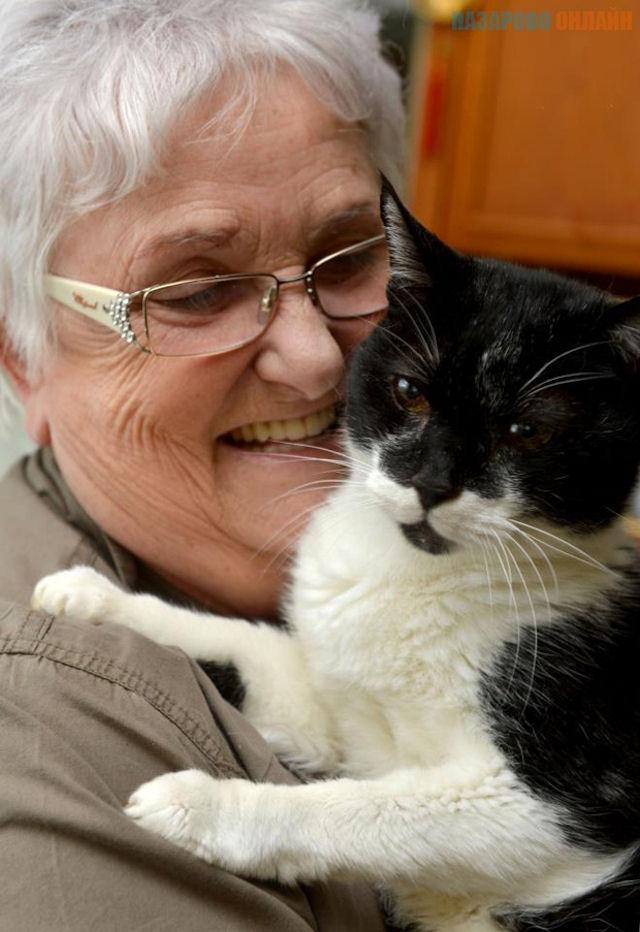 Самый старый кот на Земле готовится отметить свой день рождения