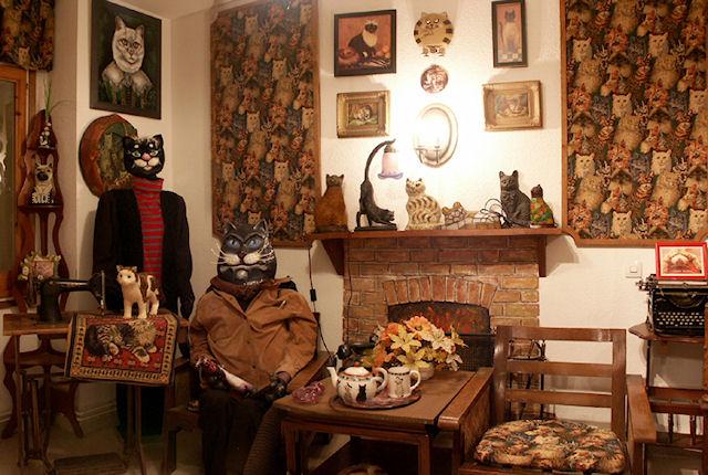 В Зеленоградске можно посетить музей кошек