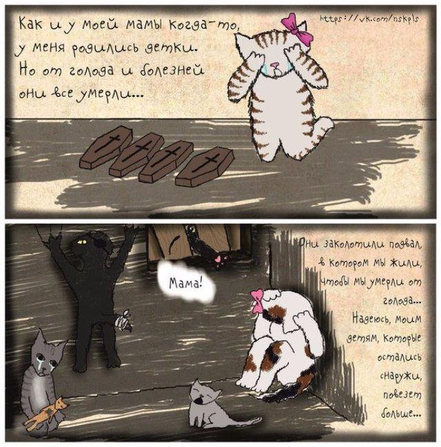 Волонтёры создали душещипательные комиксы про кошек