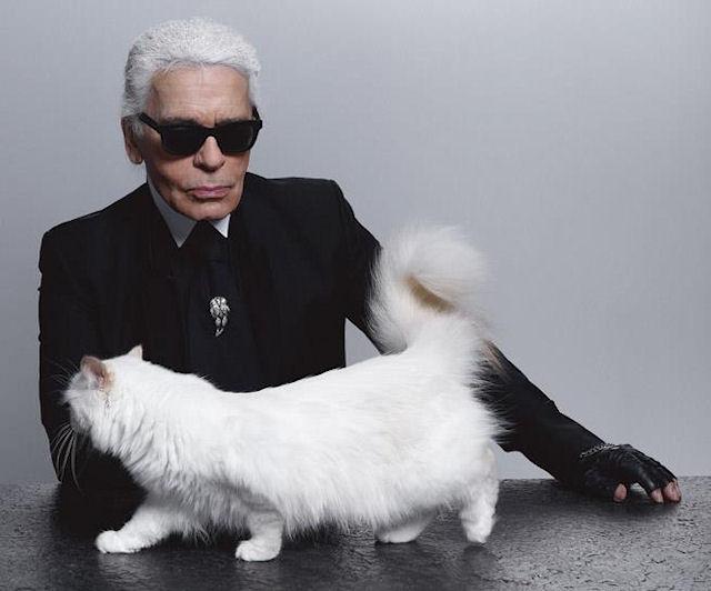 Карл Лагерфельд жалеет, что не может жениться на своей кошке
