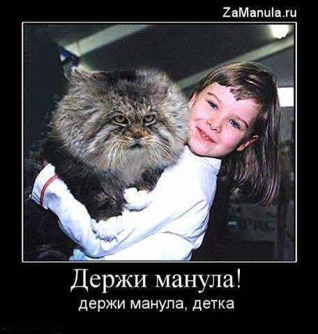 http://zamanula.ru/wp-content/uploads/2009/09/zman2.jpg