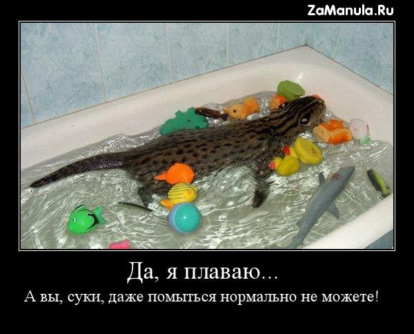 Да, я плаваю...