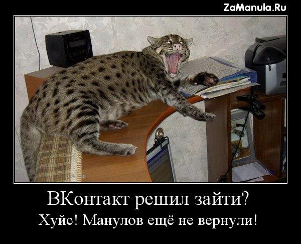Манулов ещё не вернули!