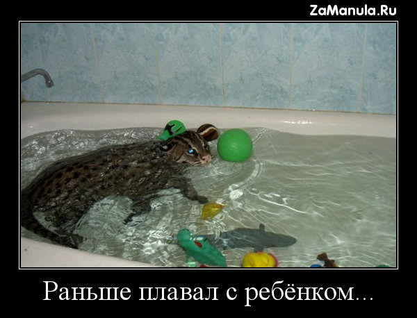 Раньше плавал с ребёнком...
