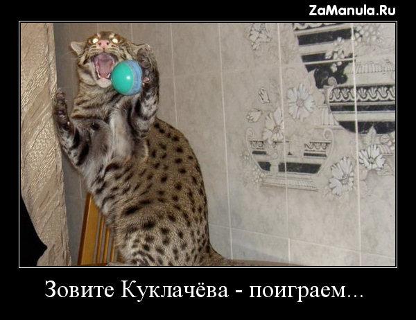 Зовите Куклачёва - поиграем...
