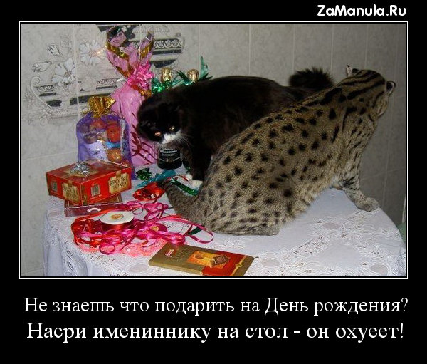 Не знаешь что подарить на День рождения?