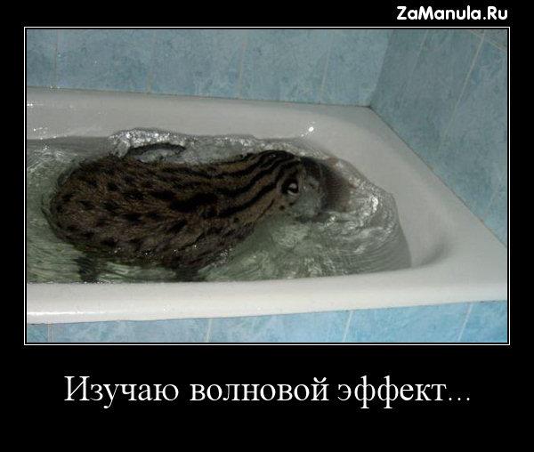 Изучаю волновой эффект...