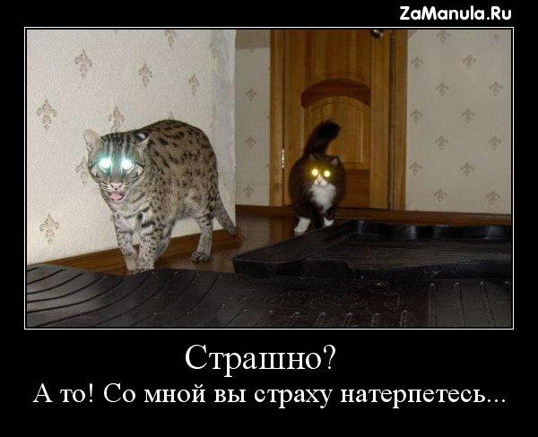 Страшно?