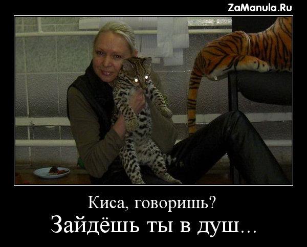 Киса, говоришь?
