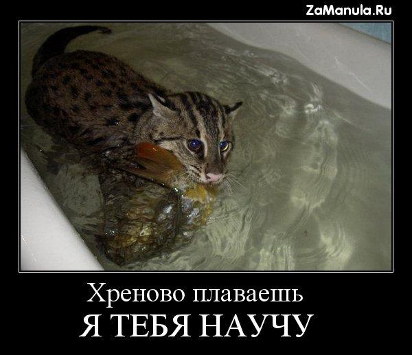 Хреново плаваешь