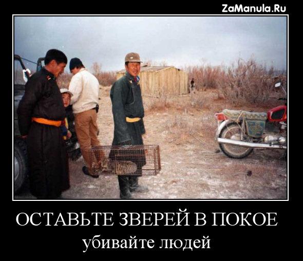 http://zamanula.ru/wp-content/uploads/2009/12/za11.jpg