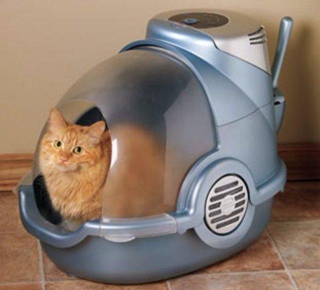Футуристический лоток для кошек