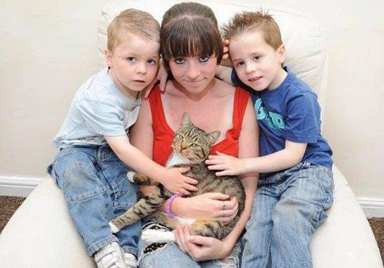 Отважный кот спас своего хозяина от обидчиков