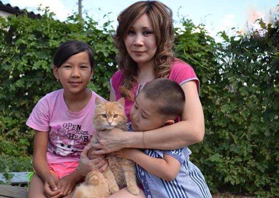 В Саратовской области кот спас детей от ядовитой змеи