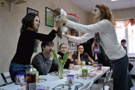 Котокафе массово распространяются по России