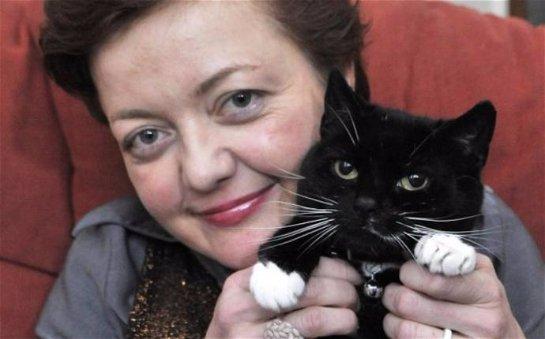 Женщина потратила 1 500 долларов, чтобы отсудить своего кота