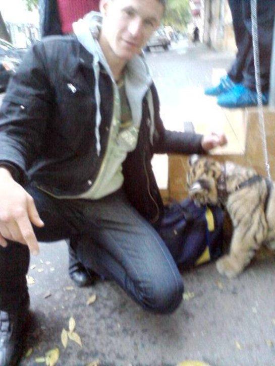 В Одесском зоопарке запечатлели необычного льва