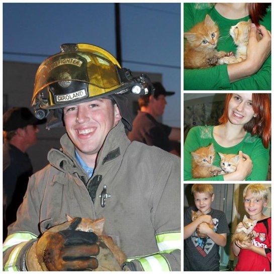 В Нью-Мексико пожарные спасли рыжих котят