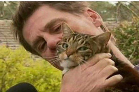 Кошка спасла хозяина во время пожара