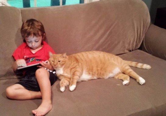 Кот стал лучшим другом для ребёнка
