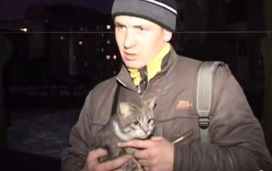 В Могилеве спасли кота, который просидел 4 дня в запертой машине