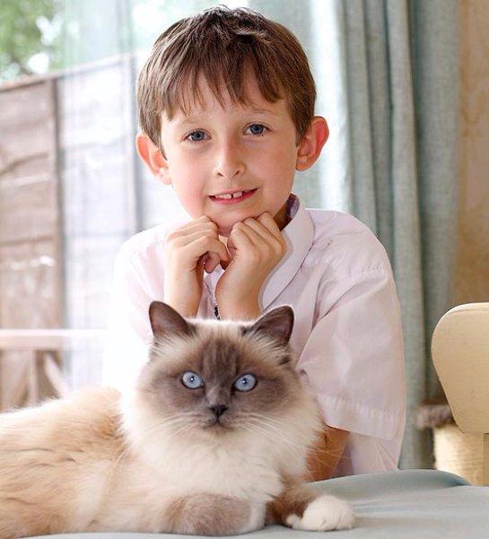 Кошка научила больного мальчика общаться с людьми