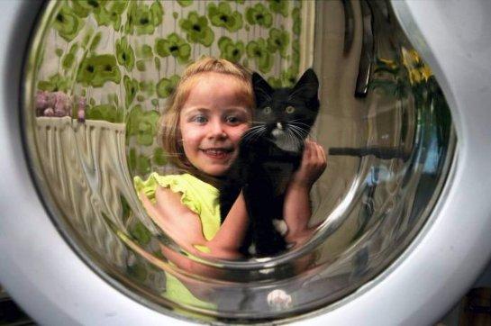 Котенок чудом выжил в стиральной машине