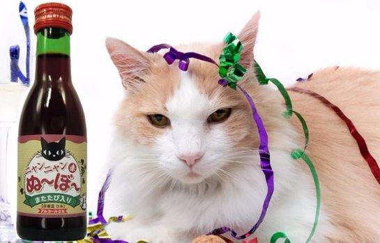В Японии в продажу вышло кошачье вино
