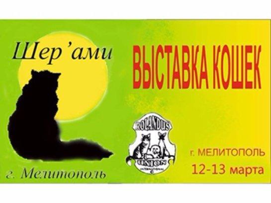 В Мелитополе состоится традиционная выставка кошек