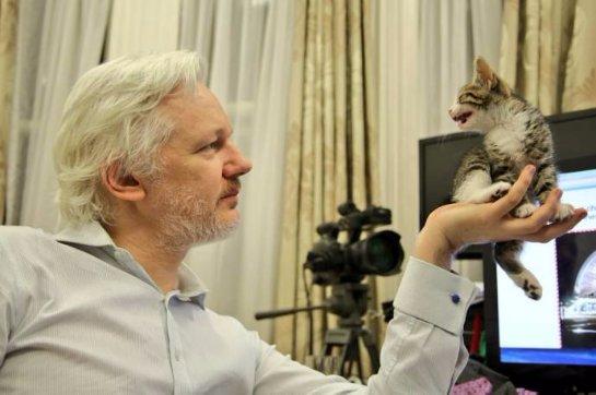 Джулиану Ассанжу презентовали котенка