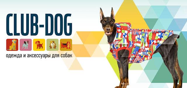Популярный интернет магазин одежды для собак
