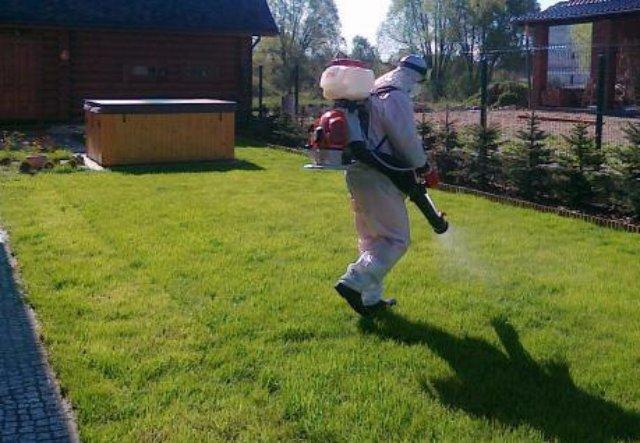Качественные методы борьбы с насекомыми и грызунами